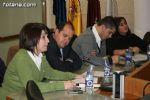 Pleno ordinario noviembre 2008